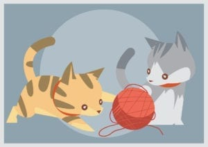 Kitten toys to avoid